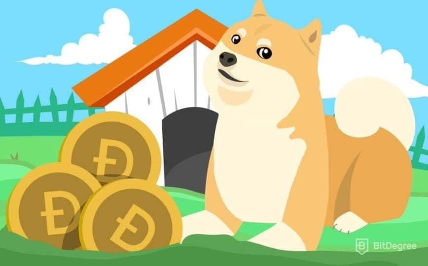 doge to usd dollar