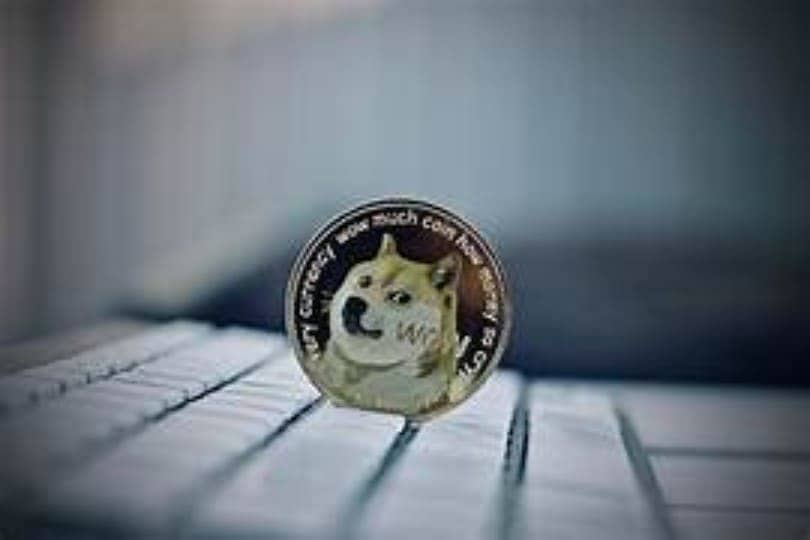 doge coin to western union transfer