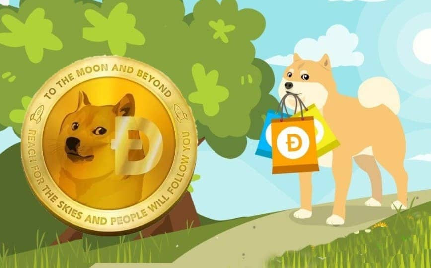 Dogecoin to cash exchange